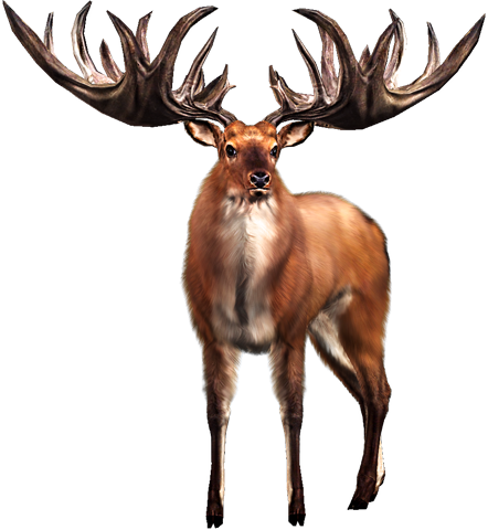 Big Buck HD Wild Bbhdw_02